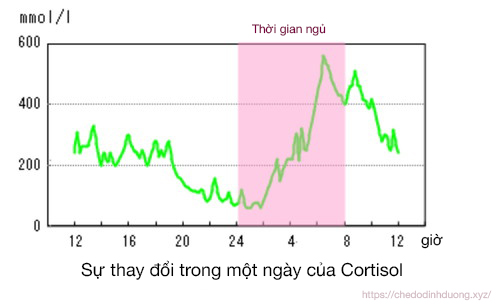 thuc don giam can trong 1 thang